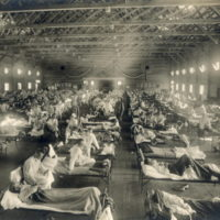 Trump's Suspect Spanish Flu Claims