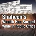 SHAHEEN WEALTH
