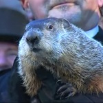 Groundhog Friday, Groundhog Day Edition