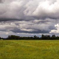 Steve King's Climate Change Rainfall Claims