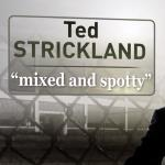Misleading Attack on Strickland