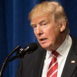 Trump's Bogus Terrorist Claim