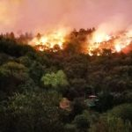 No Arrests for California Wildfire