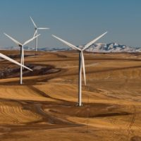 Does Wind 'Work' Without Subsidies?